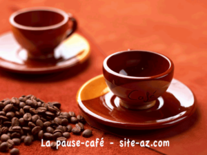Pause cafe en visio : Rencontre, conference a Fontaine